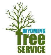 Wyoming Tree Service